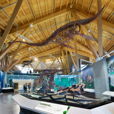 PJC-Dinosaur-Museum-Teeple-Architects-06