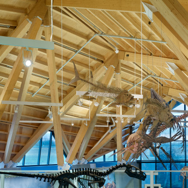 PJC-Dinosaur-Museum-Teeple-Architects-08