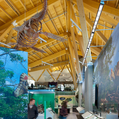 PJC-Dinosaur-Museum-Teeple-Architects-11